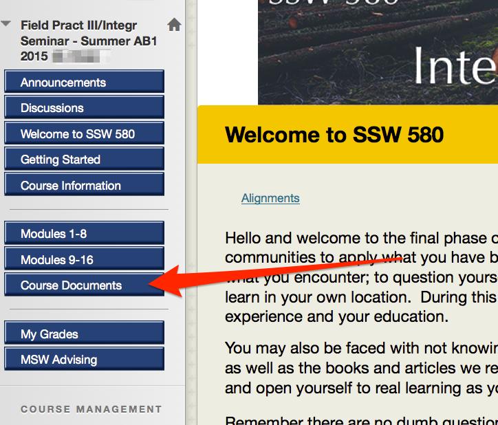 welcome_to_ssw_580_e28093_field_pract_iii_integr_seminar_-____