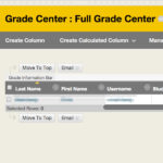 Blackboard grade center view