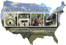 USDA APHIS National Rabies Management Program