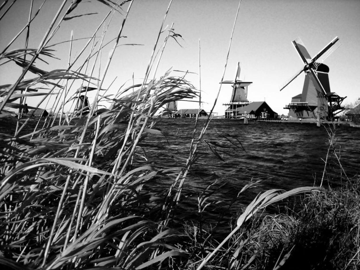 Windmills in Holland. Photo Credit Holland Wegner