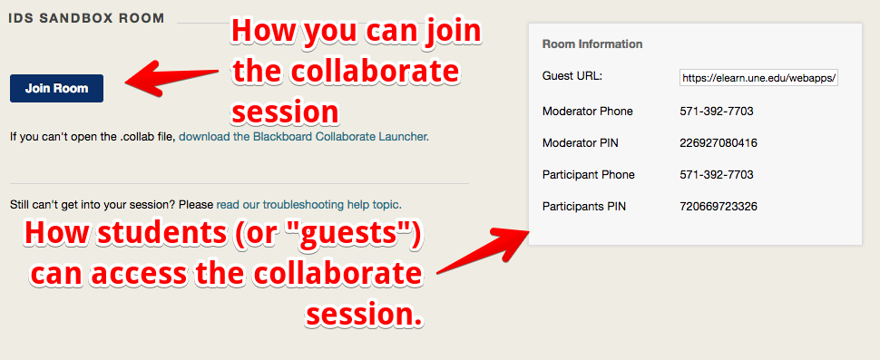 persistent room option page