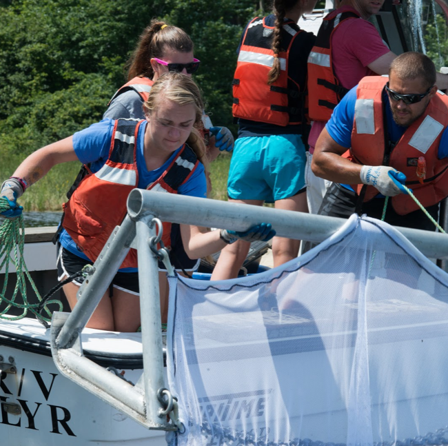 UNE students on a boat putting a net into the water to investigate food systems sustainability