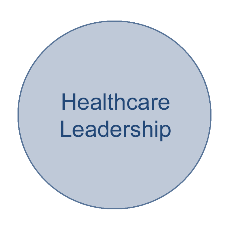 Circle of a health informatics focus area that says Healthcare Leadership