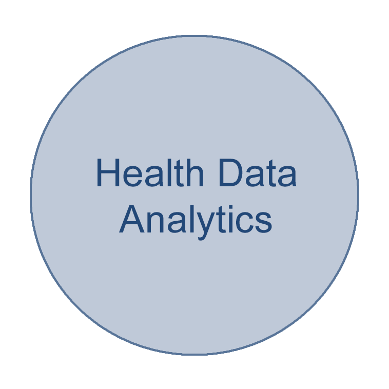 Circle of a health informatics focus area that says Health Data Analytics