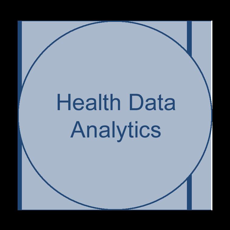 Circle of a health informatics focus area that says Health Data Analytics