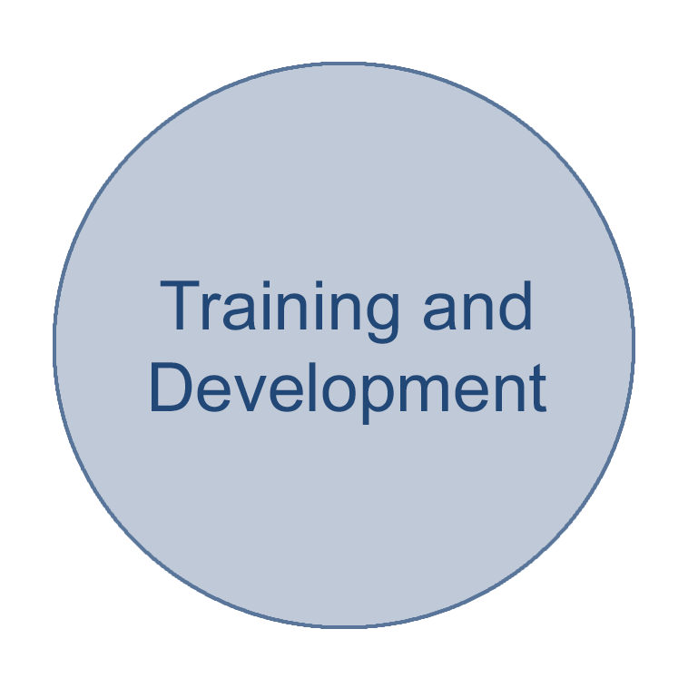 Circle of a health informatics focus area that says Training and Development
