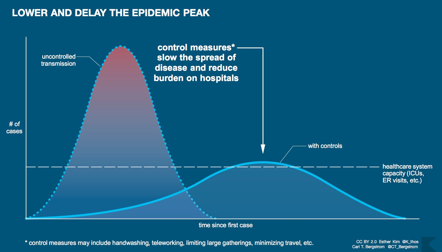 Lower and delay the epidemic peak by flattening the curve